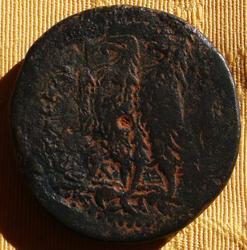 AE41 de Ptolomeo II Filadelfos. ΠTOΛEMAIOY ΒΑΣΙΛΕΩΣ Th_016021475_002_122_388lo