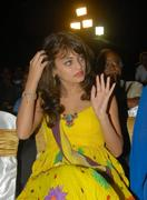 Actress Sneha Ullal Hot Photos hot images